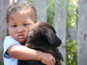 Little boy with puppy