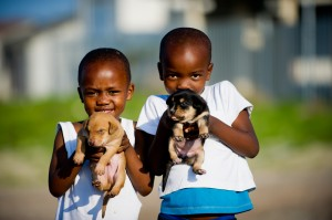 Photos from Mdzananda Animal Clinic in Cape Town, South Africa.